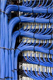 image_blue_network_cables