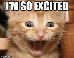 Excited Cat Meme