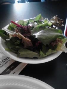 Spring Mix Salad Blend