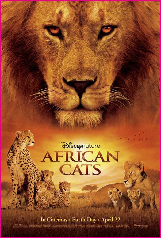 Review: African Cats