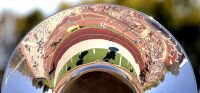 'Stangs get 61-0 walkover (photos)